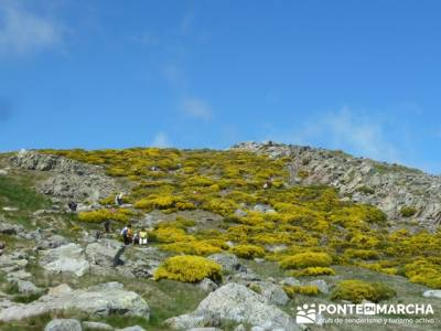 Parque Regional Sierra de Gredos - Laguna Grande de Gredos;club trekking;rutas y senderismo madrid